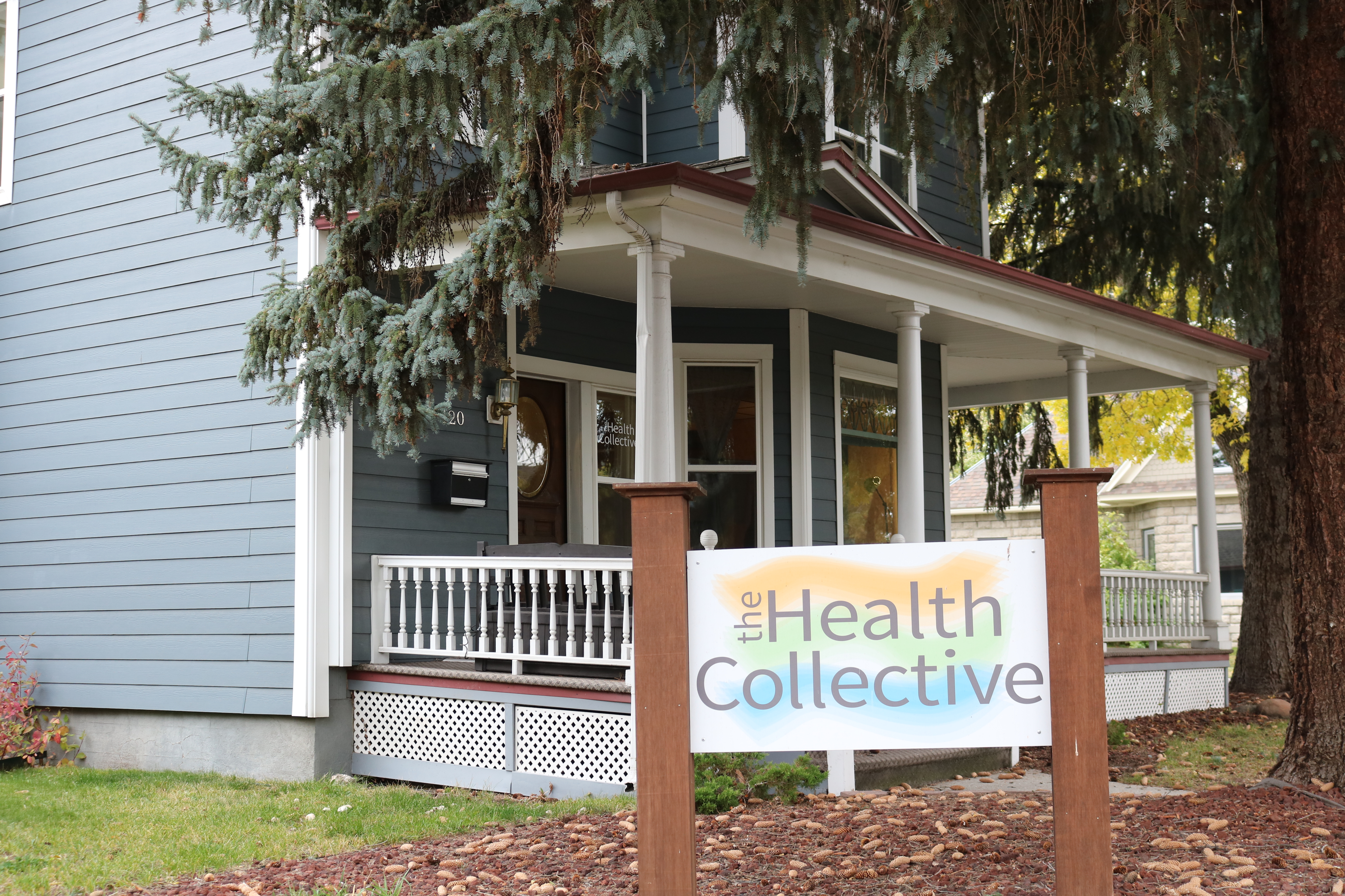 Health Collective Pic